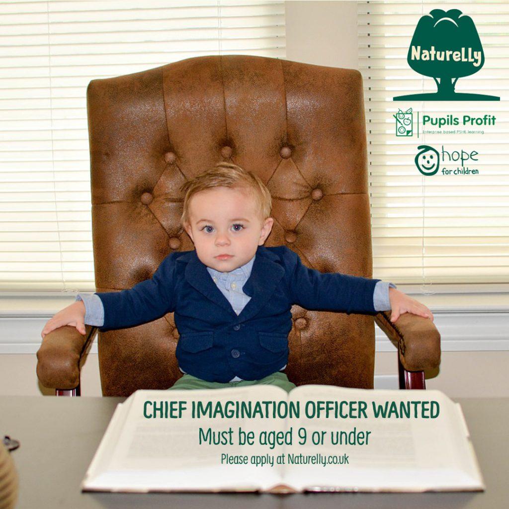 Chief Imagination / Junior NED